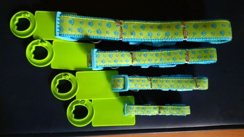 Bright paw print  patterned Collar - Small -  Green/ Blue